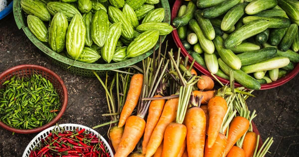 Wir müssen uns vegan ernähren, um den Klimawandel zu stoppen – laut neuem UN-Bericht