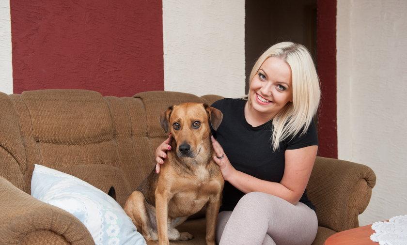 Pies Czester, odnalazł się po 5 latach!