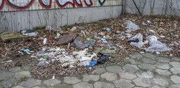 Śmieciowa mapa Poznania