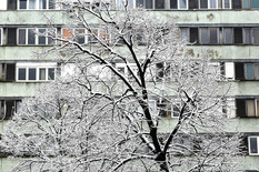 sneg foto Vesna Lalic