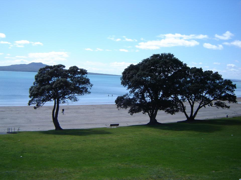 East Coast bays - Auckland