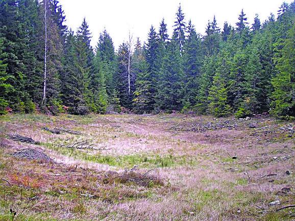 Košaninova jezera još nisu dovoljno ispitana
