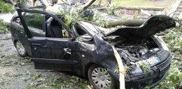 Tragiczne skutki nawałnicy. Drzewo przygniotło kobietę w samochodzie
