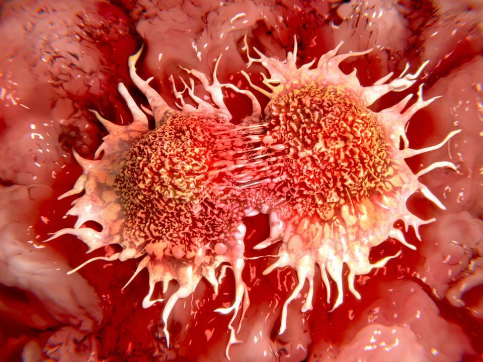 Chroni przed rakiem