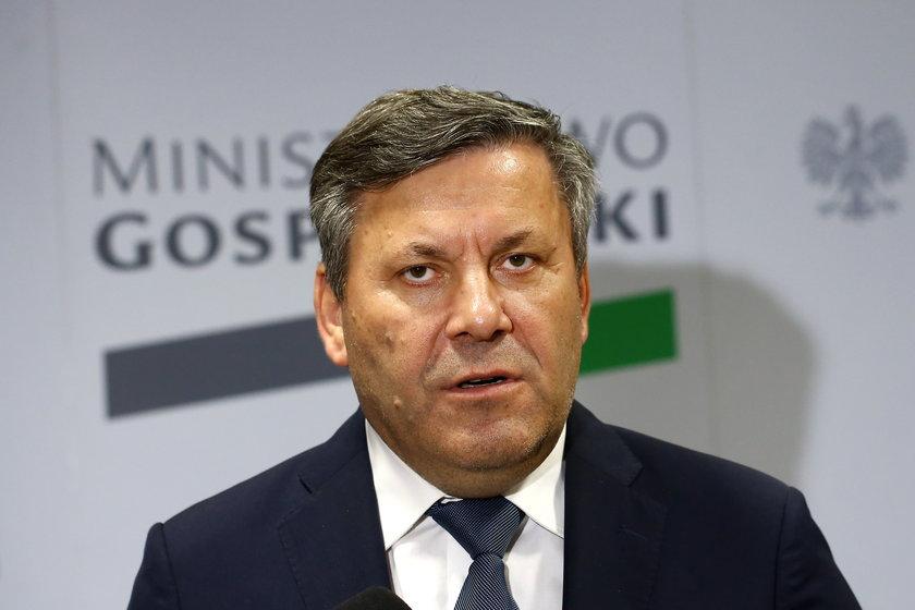 Janusz Piechociński, prezes PSL