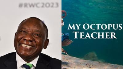 Oscars 2021: SA president Cyril Ramaphosa celebrates 'My Octopus Teacher' documentary win