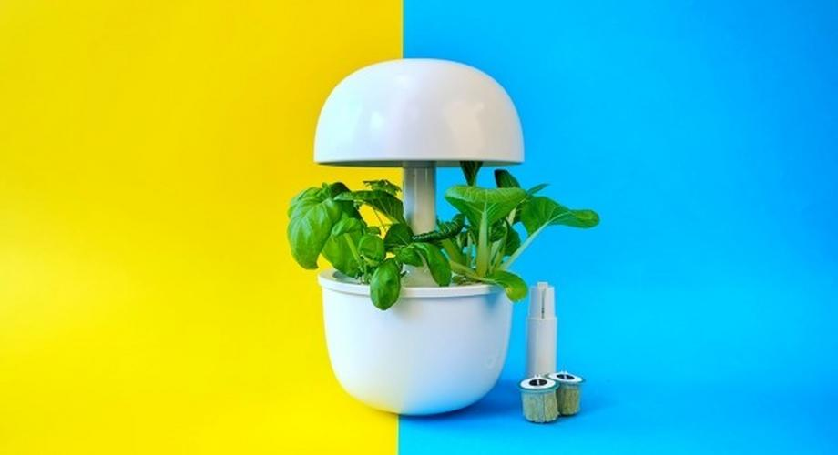 Bosch Smartgrow 3 im Test: Knackiges Gemüse für 150 Euro
