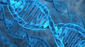 Naukowcy usunęli z ludzkiego zarodka gen, odpowiedzialny za niewydolność serca