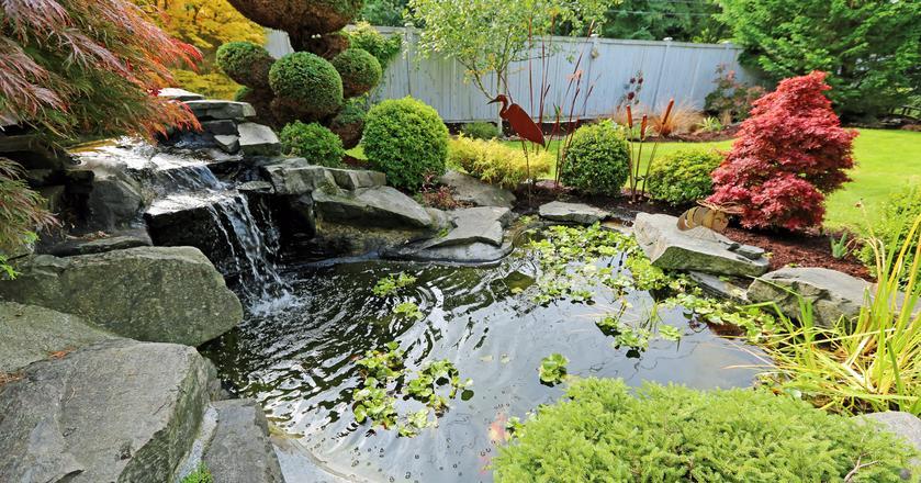 Oczko wodne może stanowić kłopot przy sprzedaży domu