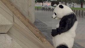 Reklama z sikającą pandą, symbolizującą chińskich turystów, wycofana z telewizji
