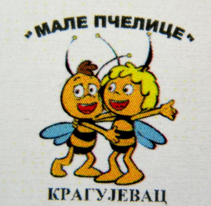 508075_kraguejvac-male-pcelice270814ras-foto-poslao-nebojsa-radisic-2