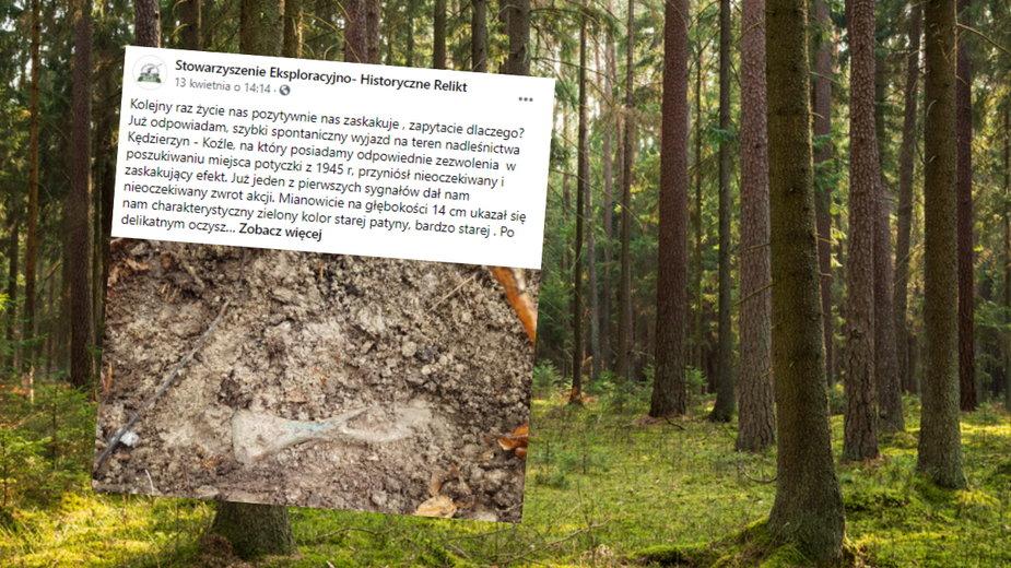 W lesie znaleziono siekierkę sprzed 3 tys. lat