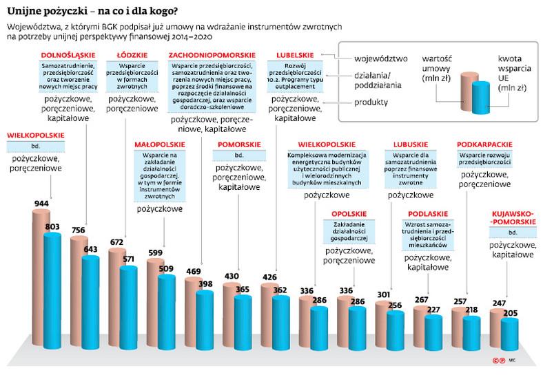 Unijne pożyczki - na co i dla kogo?