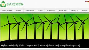 Energia odnawialna szansą także dla polskich firm
