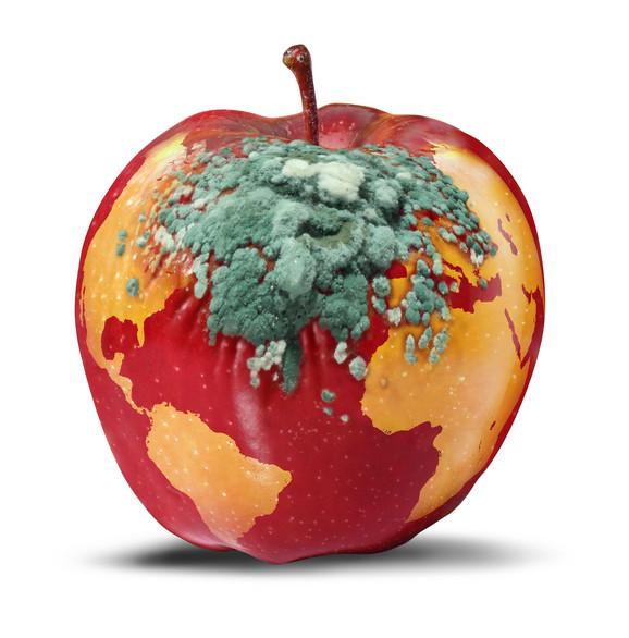 Šta se dešava sa cenom jabuka i kome će voćari prodati ono što proizvedu?