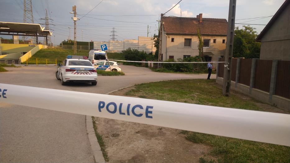 Helyszínelnek Érden, ahol holttestet találtak egy házban szombaton / Fotó: Blikk