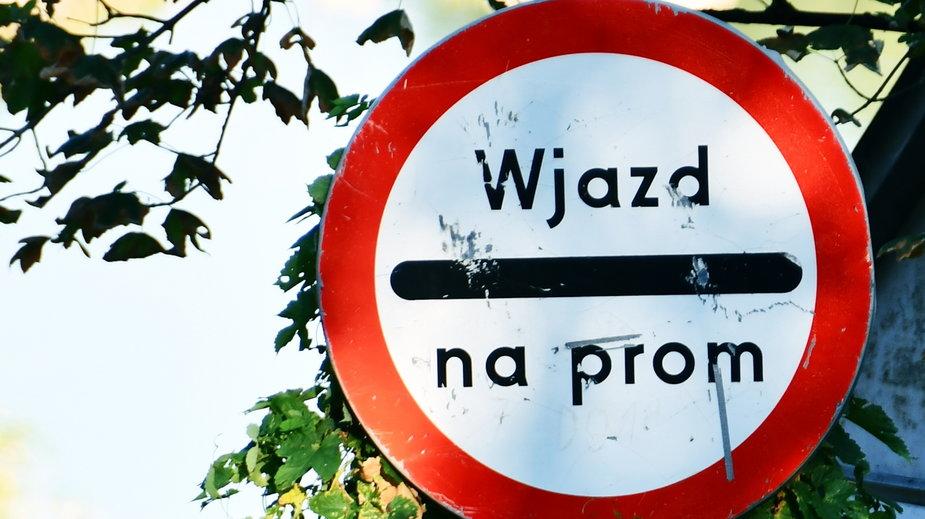 Promy rzeczne w Polsce