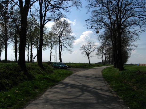 """Droga do grodu - """"feralne skrzyżowanie"""""""