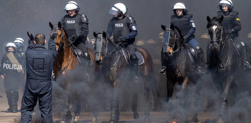 Konie zdały trudny egzamin