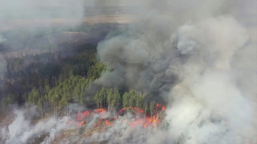 Pożary w lasach w okolicy Czarnobyla