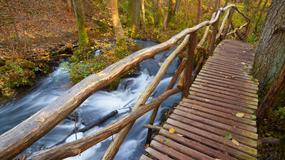 W krainie lasów, rzek i bunkrów