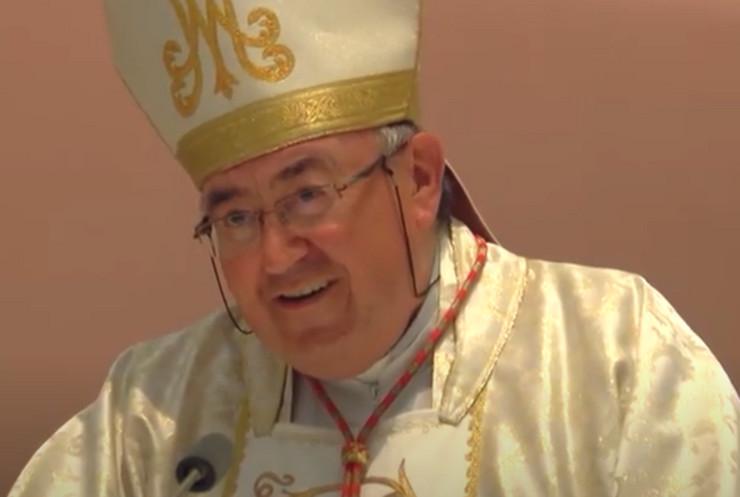 Vinko Puljić kardinal