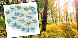 W końcu odpoczniemy od deszczu. Wraca słońce. Mamy najświeższą prognozę pogody!