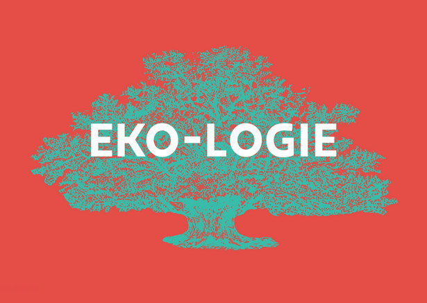 Żydowski Uniwersytet Otwarty: Żydowskie eko-logie 2020