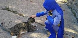 Przebiera się za superbohaterów, by ratować bezdomne koty