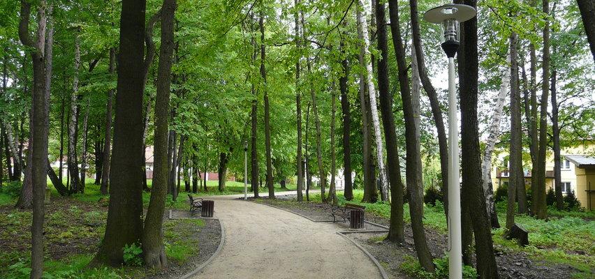 Mieszkańcy chcą wyciąć park, bo ptaki śpiewają, a liście wywołują depresję. Jest petycja