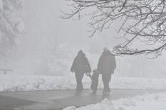 STIŽE HLADNOĆA IZ SIBIRA Sa današnjih 20 PADAMO NA NULU, nagli preokret negde i uz sneg