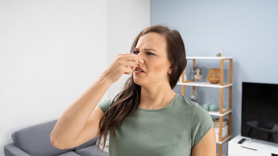 Zapach stęchlizny można usunąć domowymi sposobami - Andrey Popov/stock.adobe.com