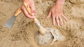 """Znaleziono szczątki kobiety, która """"urodziła"""" w grobie"""