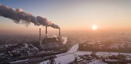 Obalamy mity związane ze smogiem