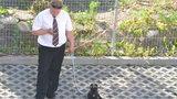 Pies Rozenek ma ochroniarza! Zobacz!