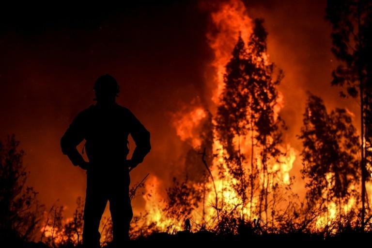 A firefighter monitors the progression of a wildfire in Amendoa, central Portugal on July 21