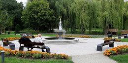 Park Oruński wypięknieje!