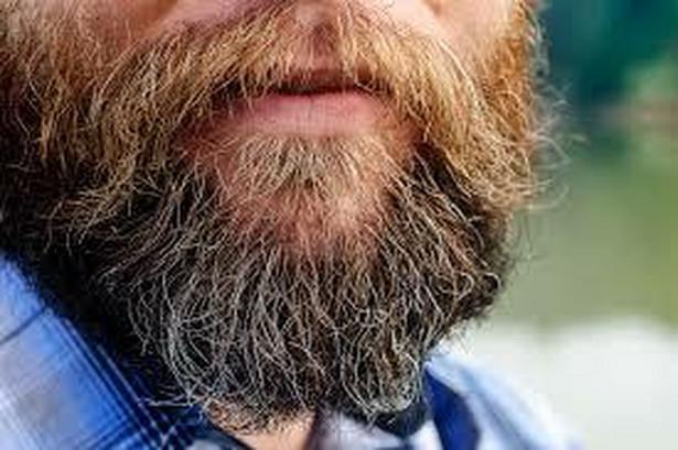 Broda i wąsy są w tej chwili coraz popularniejsze i wielu mężczyzn nie rezygnuje z nich podczas rozmów kwalifikacyjnych. Raczej na pewno ci jednak nie pomogą. Jeśli już decydujesz się pozostawić zarost upewnij się, że jest perfekcyjnie zadbany.