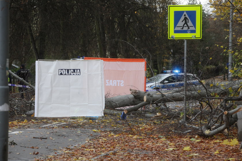 Tragiczny bilans wichury nad Polską