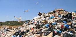 Zapłacimy olbrzymie kary za śmieci?! Eksperci biją na alarm