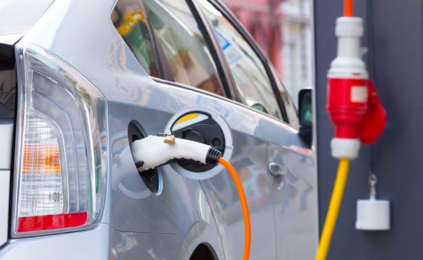 W ubiegłym roku sprzedaż samochodów elektrycznych w Norwegii, która jest jednym z liderów tego rynku, przekroczyła 100 tys. sztuk, jednak głównymi dostawcami były największe koncerny motoryzacyjne, jak Volkswagen czy Nissan.