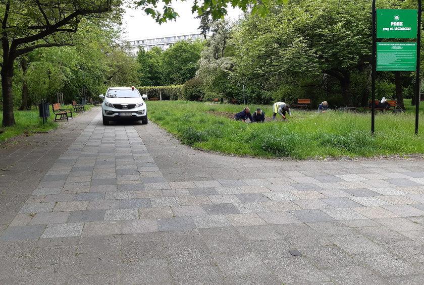 Zielona Łódź! Pomylili park z parkingiem?