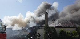 Wielki pożar pod Gdańskiem! 300 osób ewakuowanych