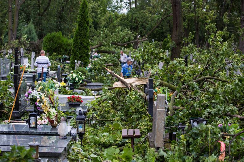 Zniszczenia po nawałnicy na cmentarzu św. Piotra i Pawła w Gnieźnie