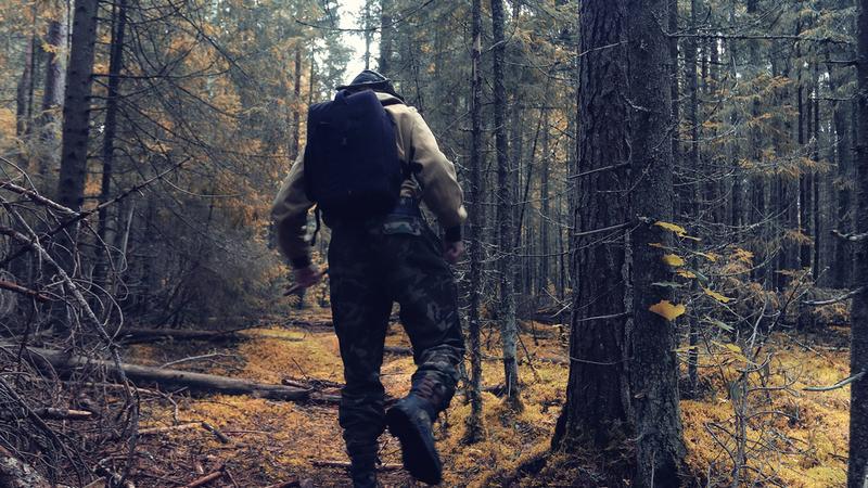 wędrówka, survival, las,