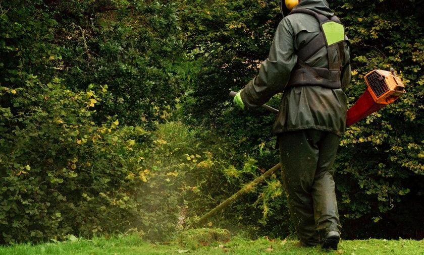Makabryczne odkrycie w Świdnicy. Podczas koszenia trawy znaleziono ciało kobiety