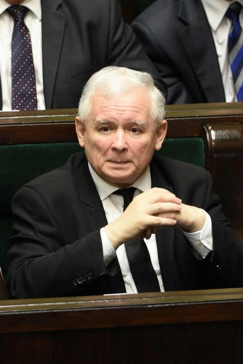 Jarosław Kaczyński kocha zwierzęta