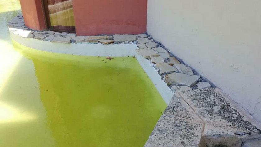 Woda w basenie luksusowego hotelu zmieniła kolor na zielony