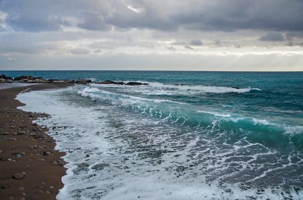 MSZ wyraziło stanowczy protest wobec tych działań Rosji i zażądało natychmiastowego cofnięcia decyzji o zamknięciu części Morza Czarnego
