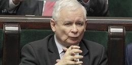 Kaczyński nie będzie zadowolony. Ten sondaż mówi wszystko